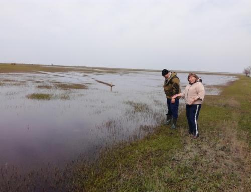 Экспедиционные выезды научных сотрудников Калмыцкого филиала