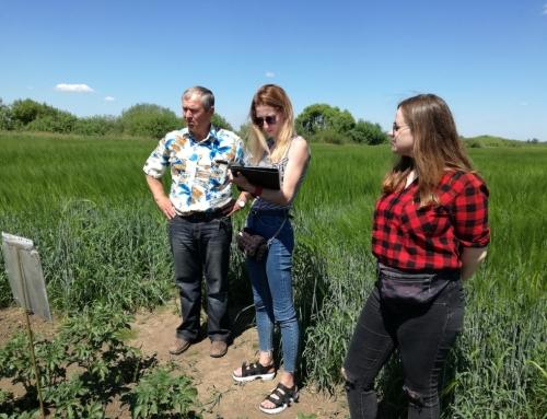 Проведение молодыми учеными ВНИИГиМ полевых исследований по программе НИР института